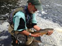 West Branch AuSable River Tiger Trout